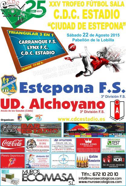 cartel estadio 2015